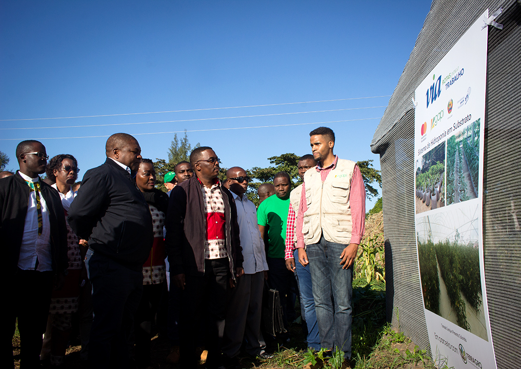 Modern agricultural projects visited by the president in Maputo province